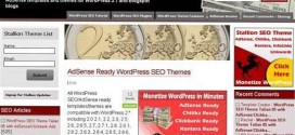 Stallion WordPress SEO Theme Review