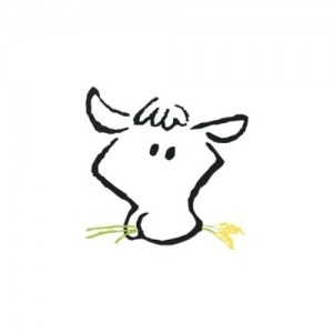 FatCow-300x300 Can I Host a website from home and How Much it Cost Me?