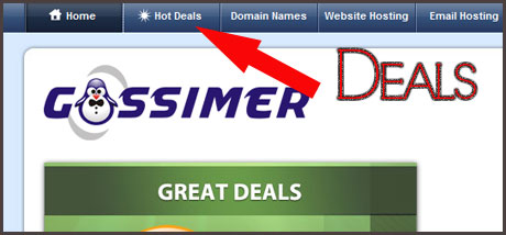 gossimer-coupon-codes Gossimer Hosting Review - What You Should Look For?