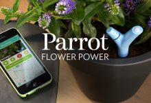 Photo of An Intelligent Sensor to Take Care of Plants Through The iPhone
