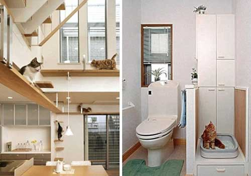 125117201312471 Home Designed for Well-being of Cats