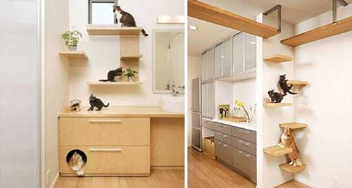 1251252013124573 Home Designed for Well-being of Cats