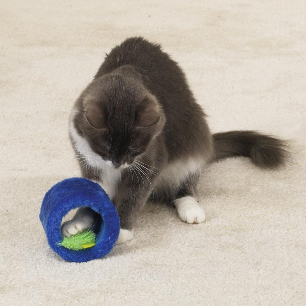17 Why Your Pets Will Like These Toys?
