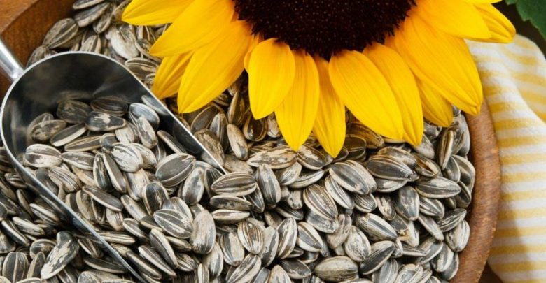 "Photo of Is ""Sunflower"" Seeds a Healthy Snack?"