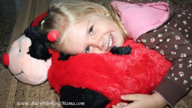Photo of Top Pillow Pets Offers & Sales