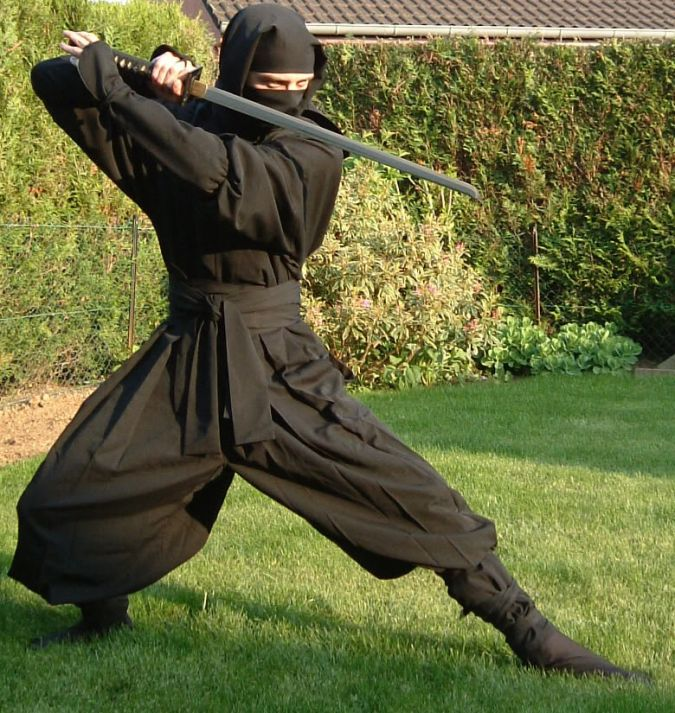Ninja-Affiliate 5 Facts to Learn About Innovative Web Hosting Solutions