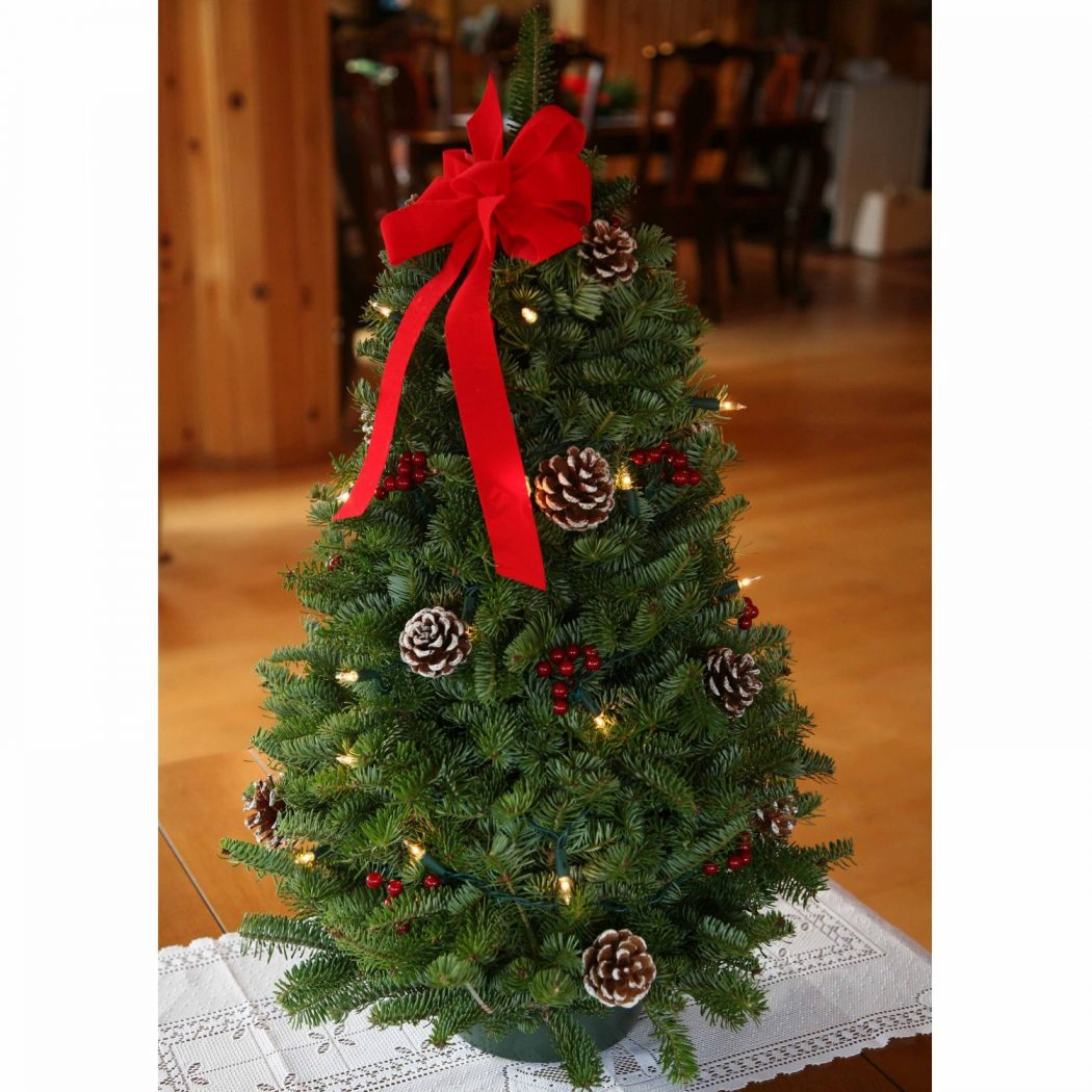 christmas-tree Prepare your Home Decorations For Next Holidays