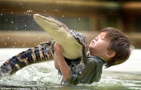 crocodile-1 3 years old boy invincible crocodile troublemaker