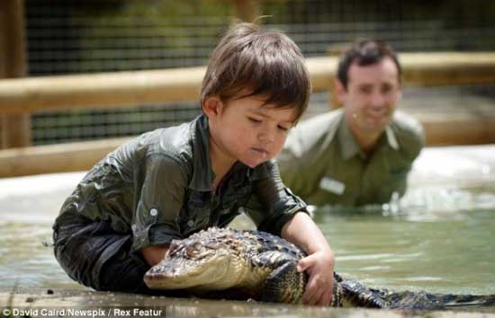 crocodile2 3 years old boy invincible crocodile troublemaker