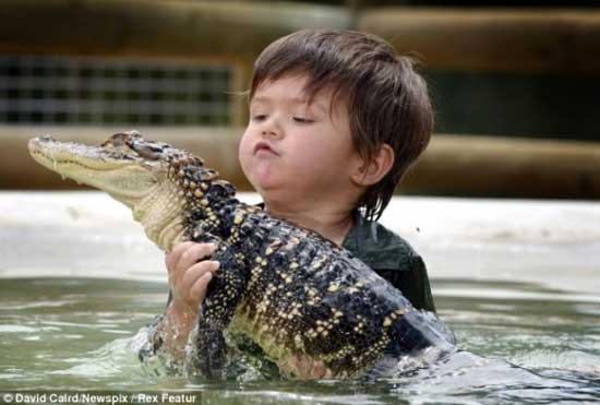 crocodile3 3 years old boy invincible crocodile troublemaker