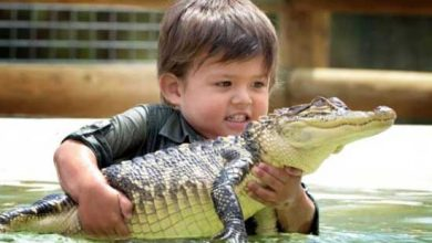 Photo of 3 years old boy invincible crocodile troublemaker