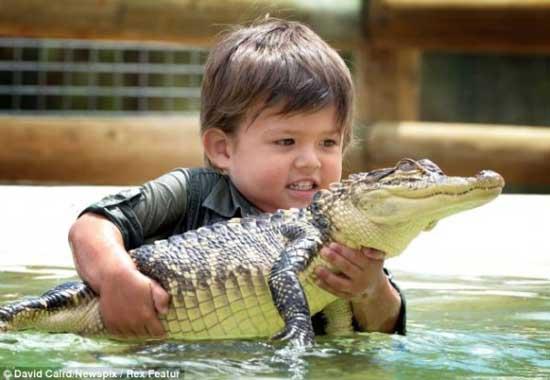 crocodile4 3 years old boy invincible crocodile troublemaker