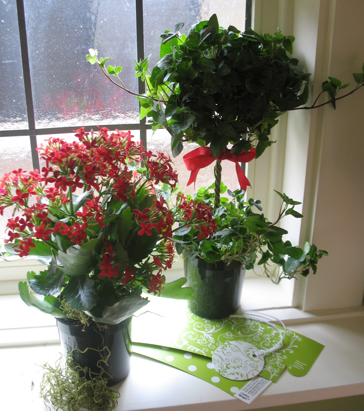 flowers5 Prepare your Home Decorations For Next Holidays
