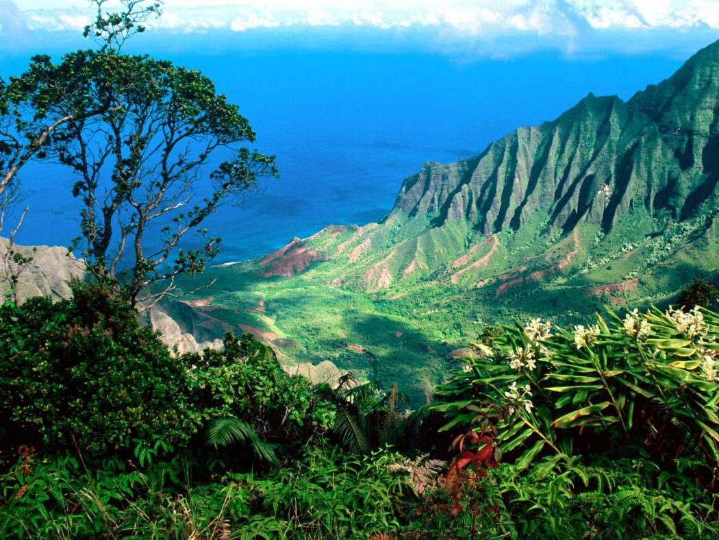 hawaii-mountains Tourists Sharing Their Tips For Hawaii Travel