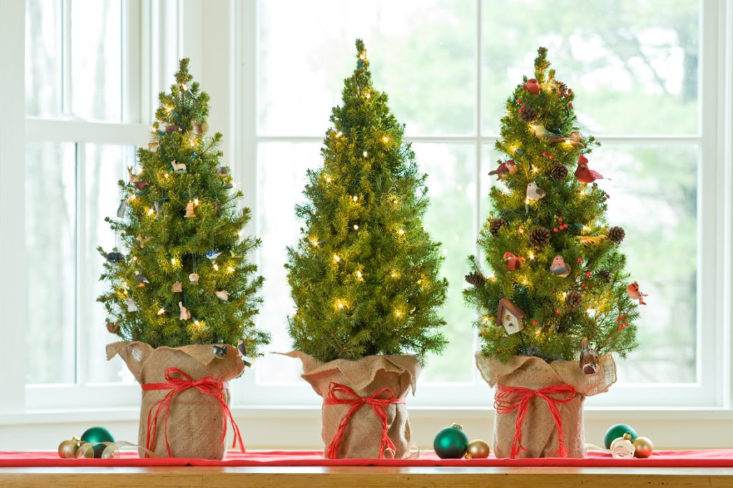 tabletop Prepare your Home Decorations For Next Holidays