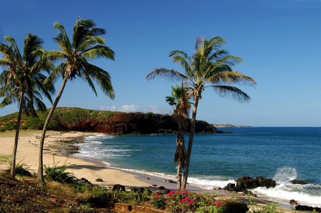 travel-to-hawaii Tourists Sharing Their Tips For Hawaii Travel