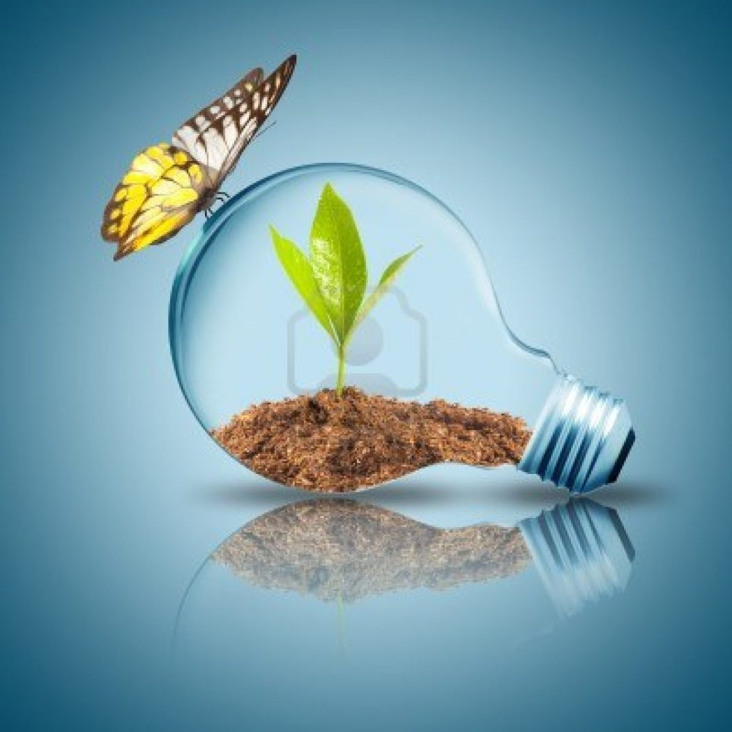 14908011-light-bulb-with-plant-inside-with-butterfly How Artificial Plant Lights Will Help Growing Your Plants?