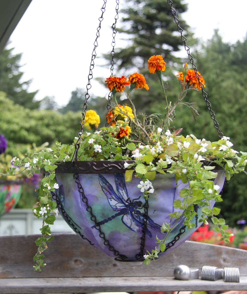 202029_dragonfly_feature How To Make Plants A Part Of Your Home Decoration?