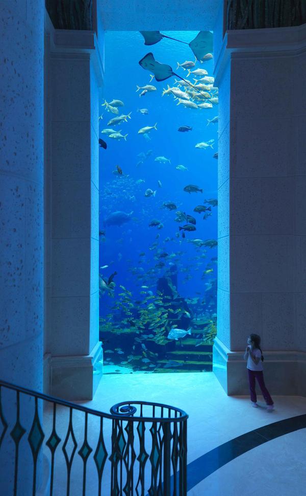 9054alsh3er Why Atlantis Dubai Hotel is My Favorite Between Arab Hotels?