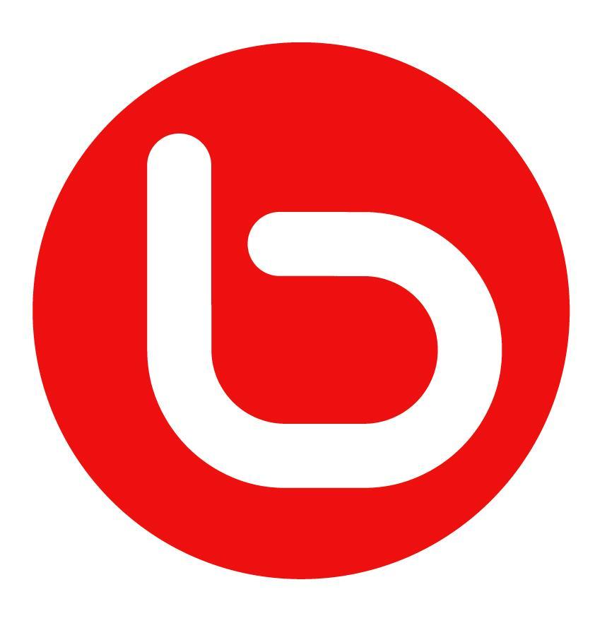BeboLogo2 The Most Popular 15 Social Websites in The World