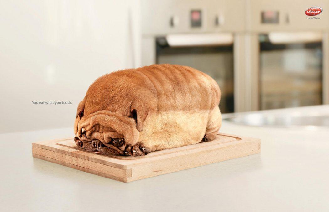 Dog-Toast-o 23 Funniest Print Ads