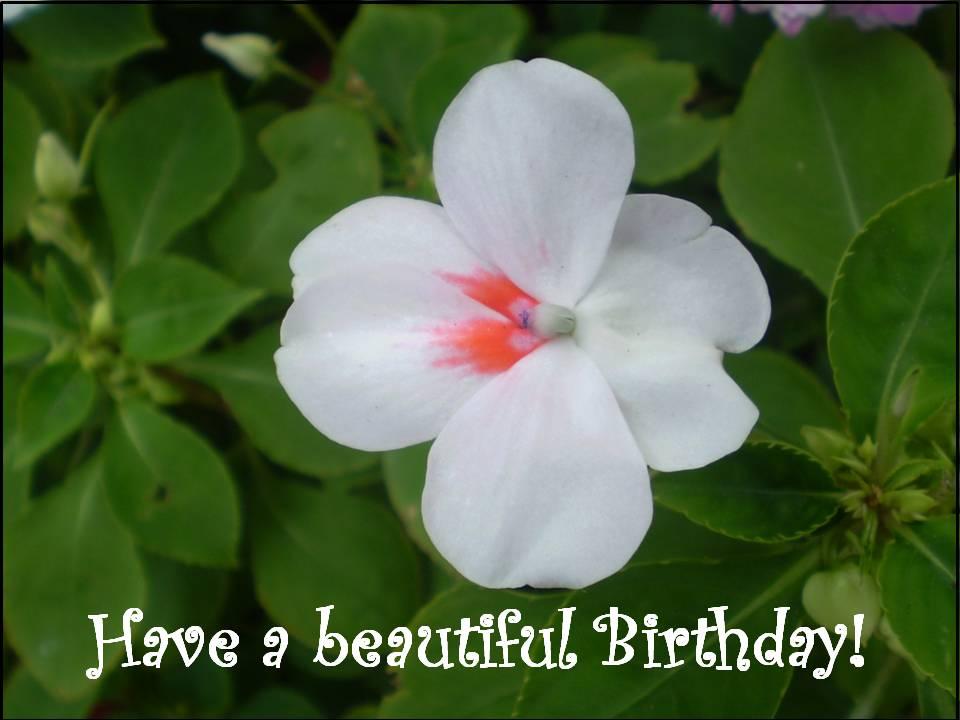 Free-printable-birthday-cards Fantastic greeting cards for birthdays