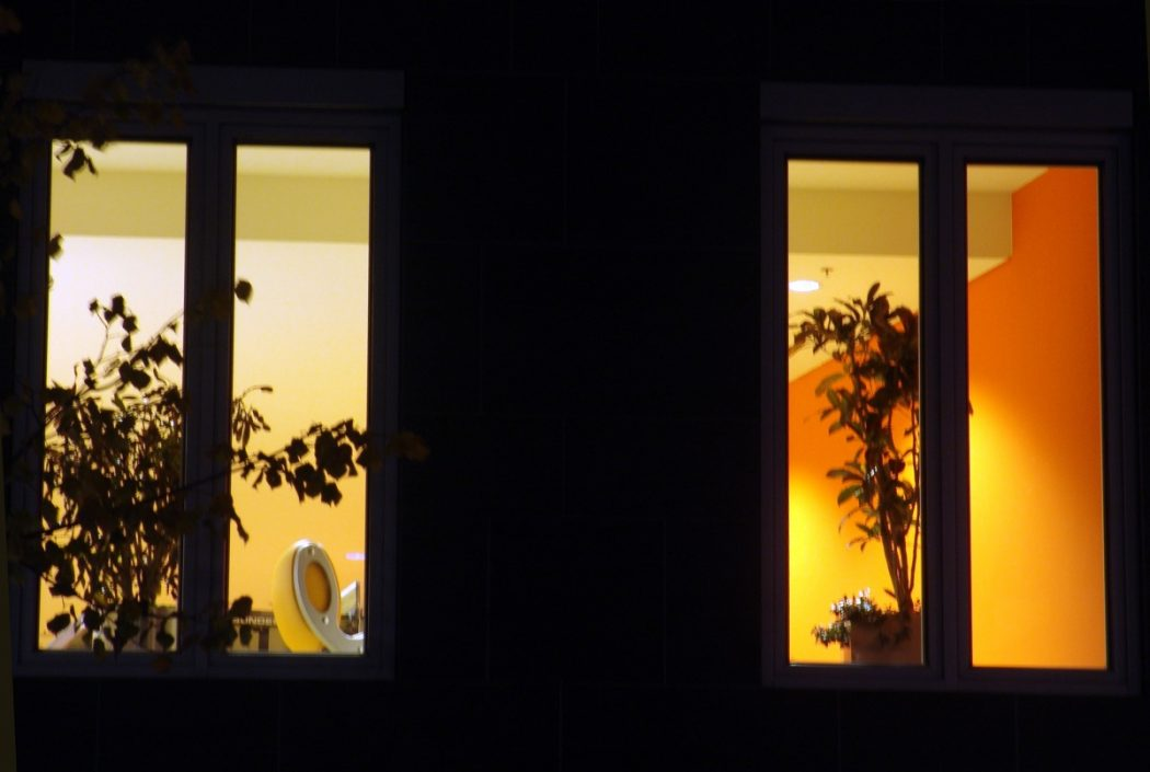 Silhouettes-of-plants-in-the-night-window-1336982515_67 How Artificial Plant Lights Will Help Growing Your Plants?