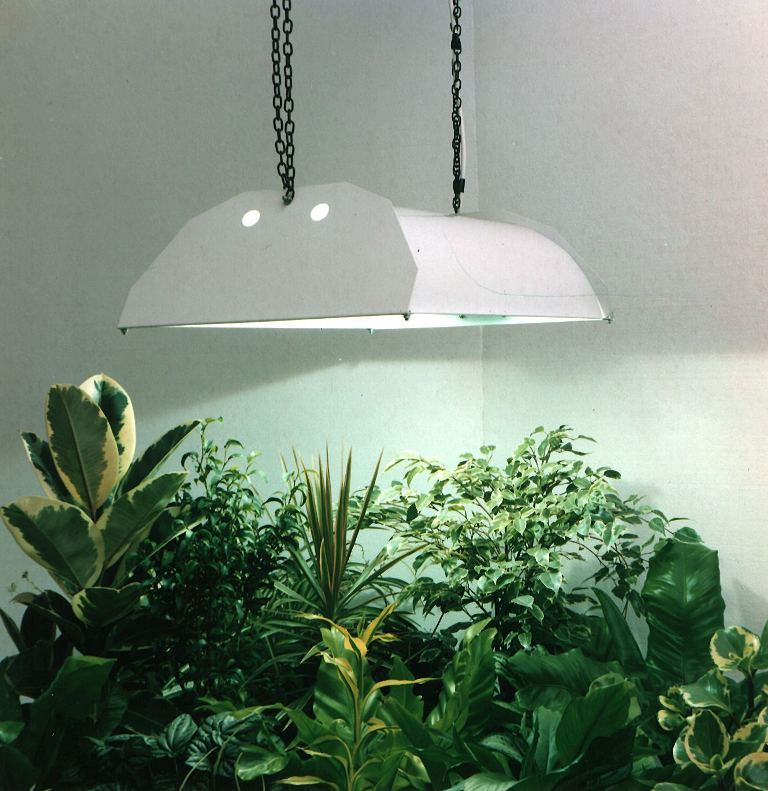 SuperNova-over-plants How Artificial Plant Lights Will Help Growing Your Plants?