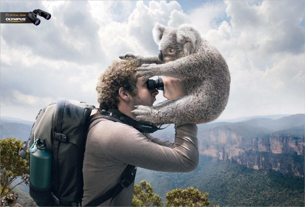 Viewing-Koala-o 23 Funniest Print Ads