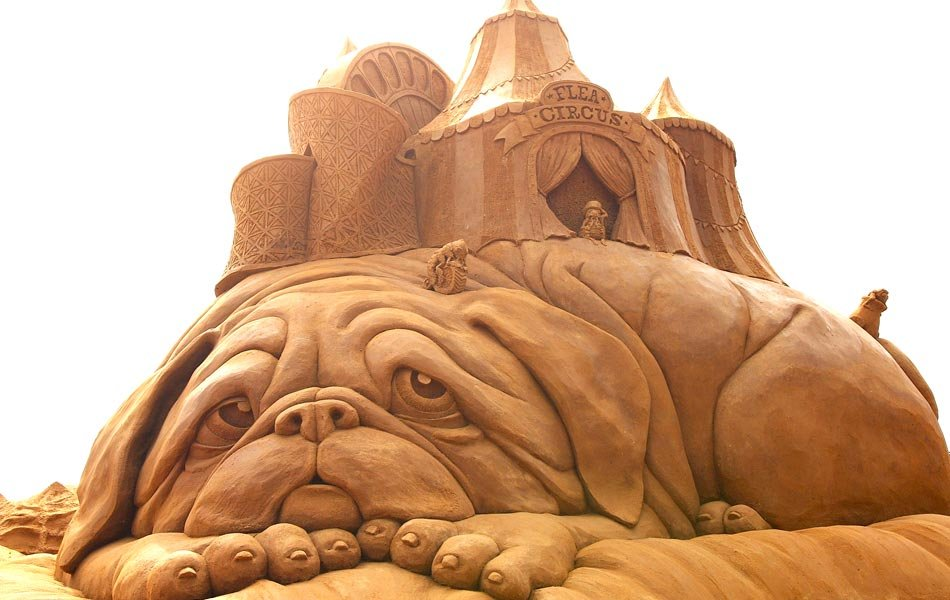 amazing-sand-sculptures1 The Best 10 Videos and 30 images for Sand Art