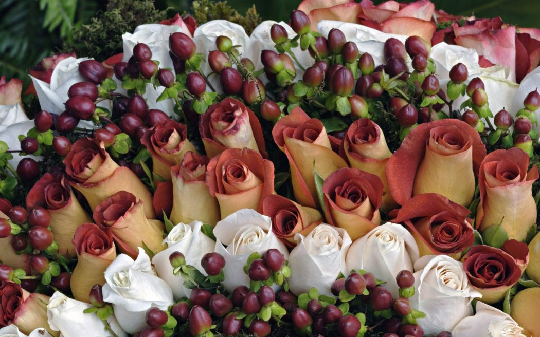 bouquet-of-red-and-white-roses-flowers-high-definition-wallpaper What Do You Know About Flower Talk?
