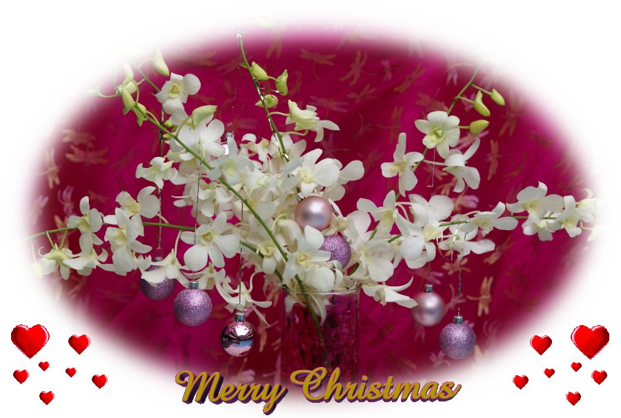 christmas_flower_card 50 Most Stylish printable greeting cards