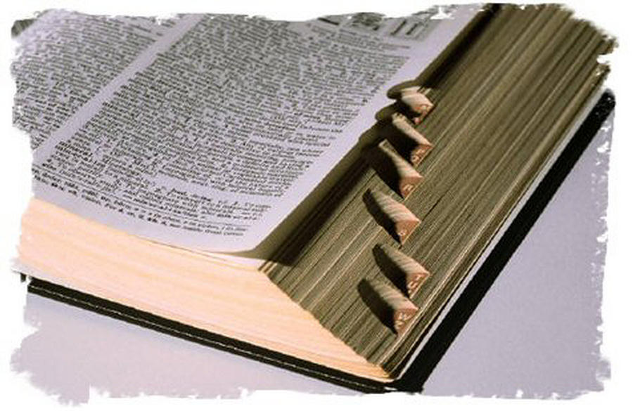 dictionary11 Surprising and Magical Translator Pens For Readers and Students