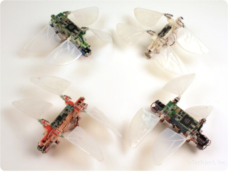 dragonflies Robotic Dragonflies That Will Dazzle You