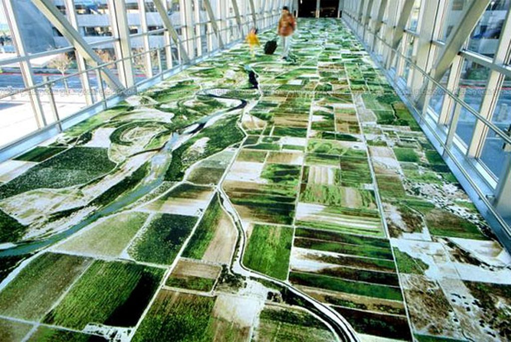 google-earth-home-carpet-m 10 Most Unique Flooring Designs For Exhibition