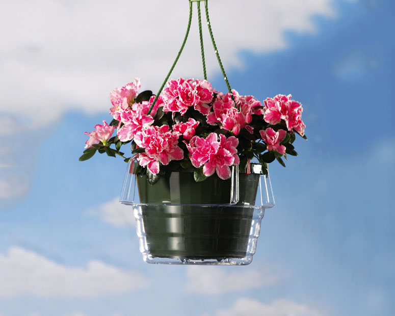 hanging-planter-drip-catchers-xl How To Make Plants A Part Of Your Home Decoration?