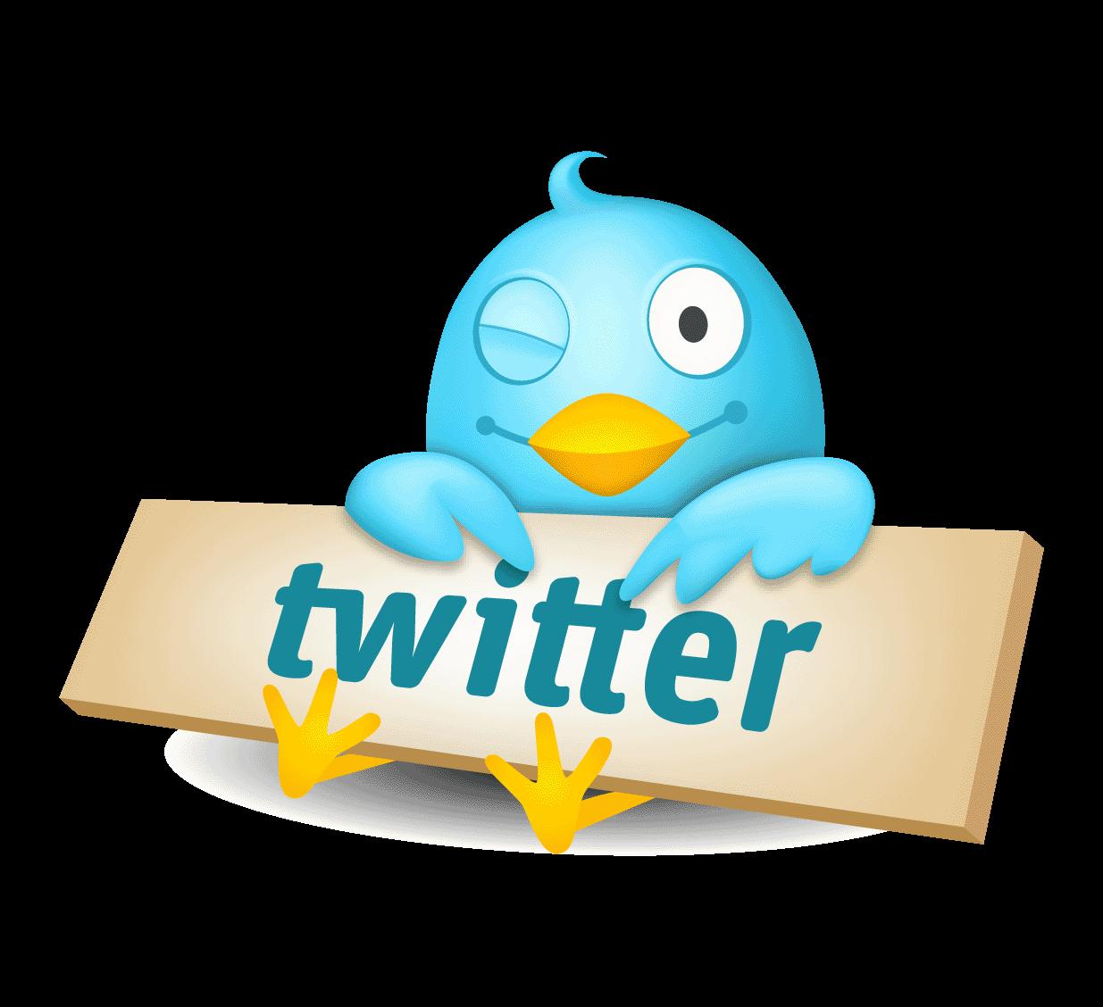 twitter-logo-bird-1 The Most Popular 15 Social Websites in The World