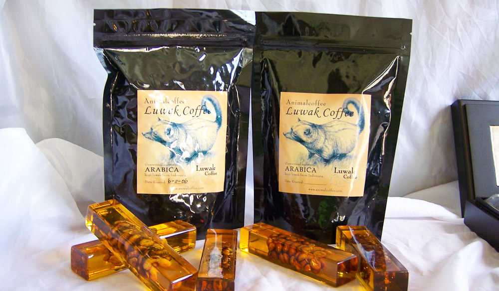 100-Things-You-Have-Never-Heard-Of-99-Kopi-Luwak-Herveys-Range-Tea-Rooms-2-of-3 Why Most Expensive Coffee Taken from Animal Source?!