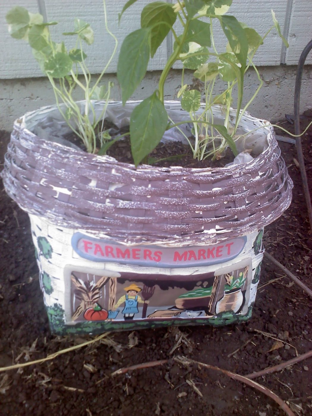 246 10 Fascinating and Unique Ideas for Portable Gardens