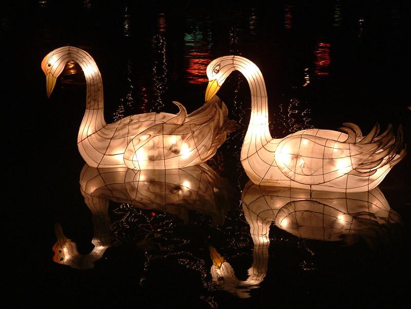 39 Creative 10 Ideas for Residential Lighting