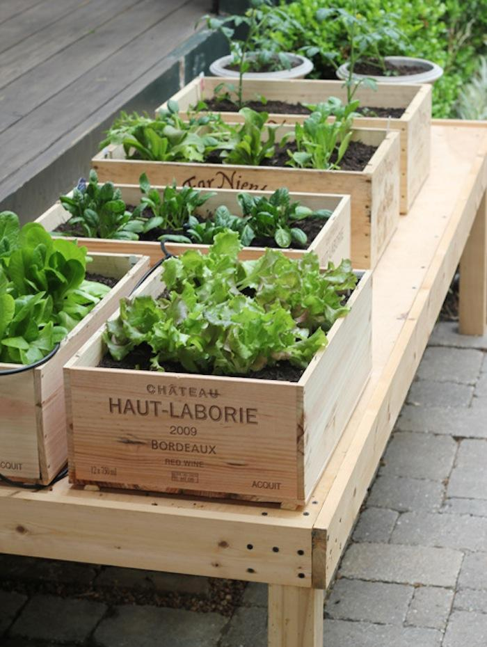700_urban-gardening-raised-beds 10 Fascinating and Unique Ideas for Portable Gardens