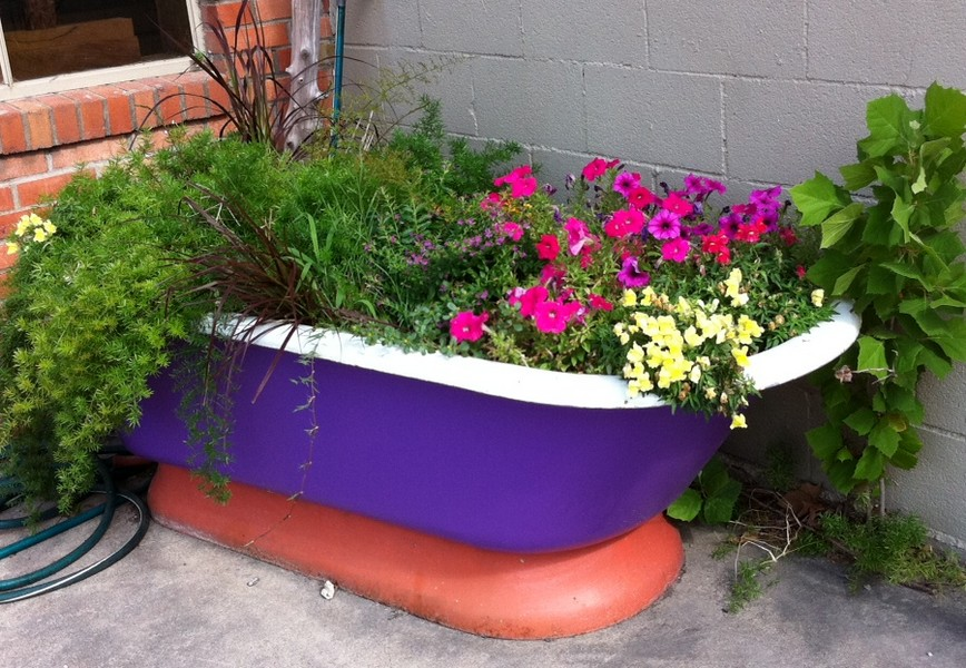 AP_bathtub-planter 10 Fascinating and Unique Ideas for Portable Gardens