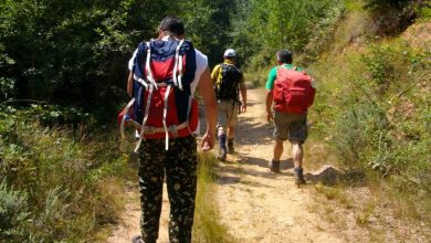 Photo of To Choose The Best Hiking Backpack, Just Follow These Steps