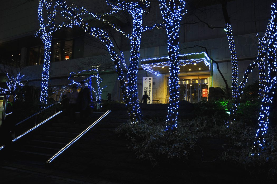 Hotel_entrance_and_fairy_lights1 Creative 10 Ideas for Residential Lighting