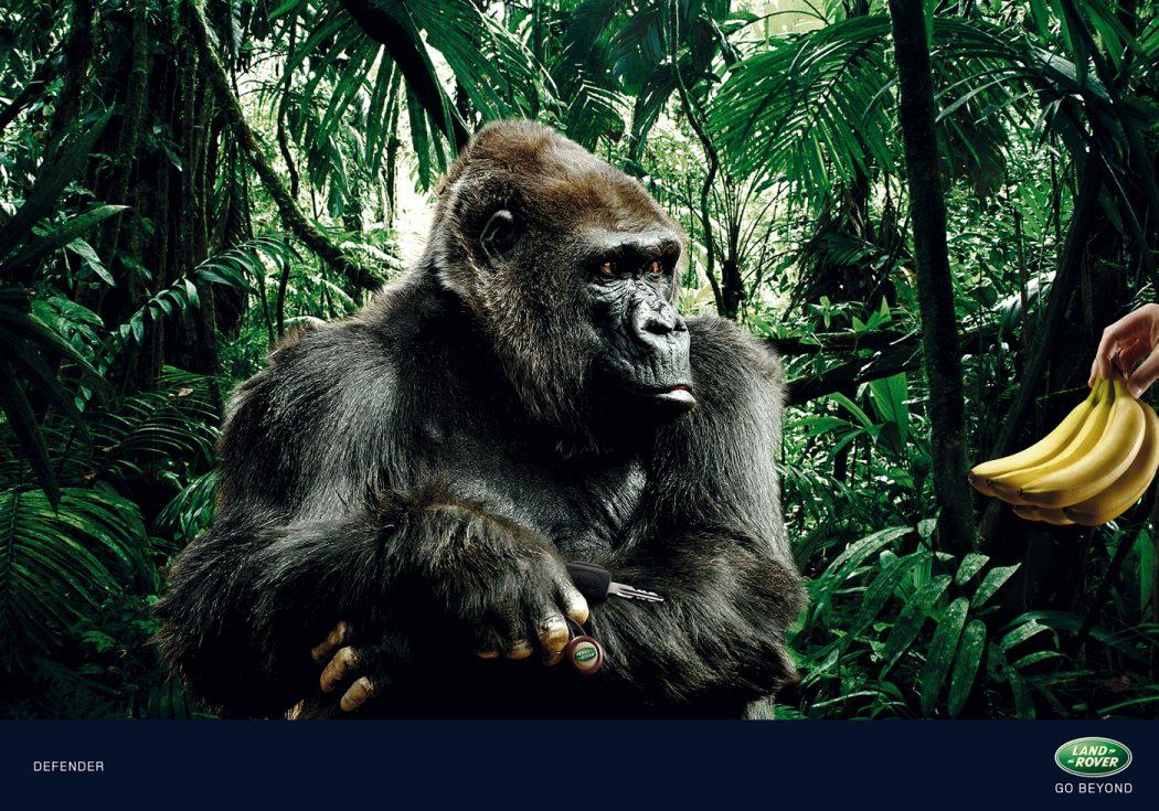 LandRover-Gorilla 40 Most Creative and Dazzling Auto Ads