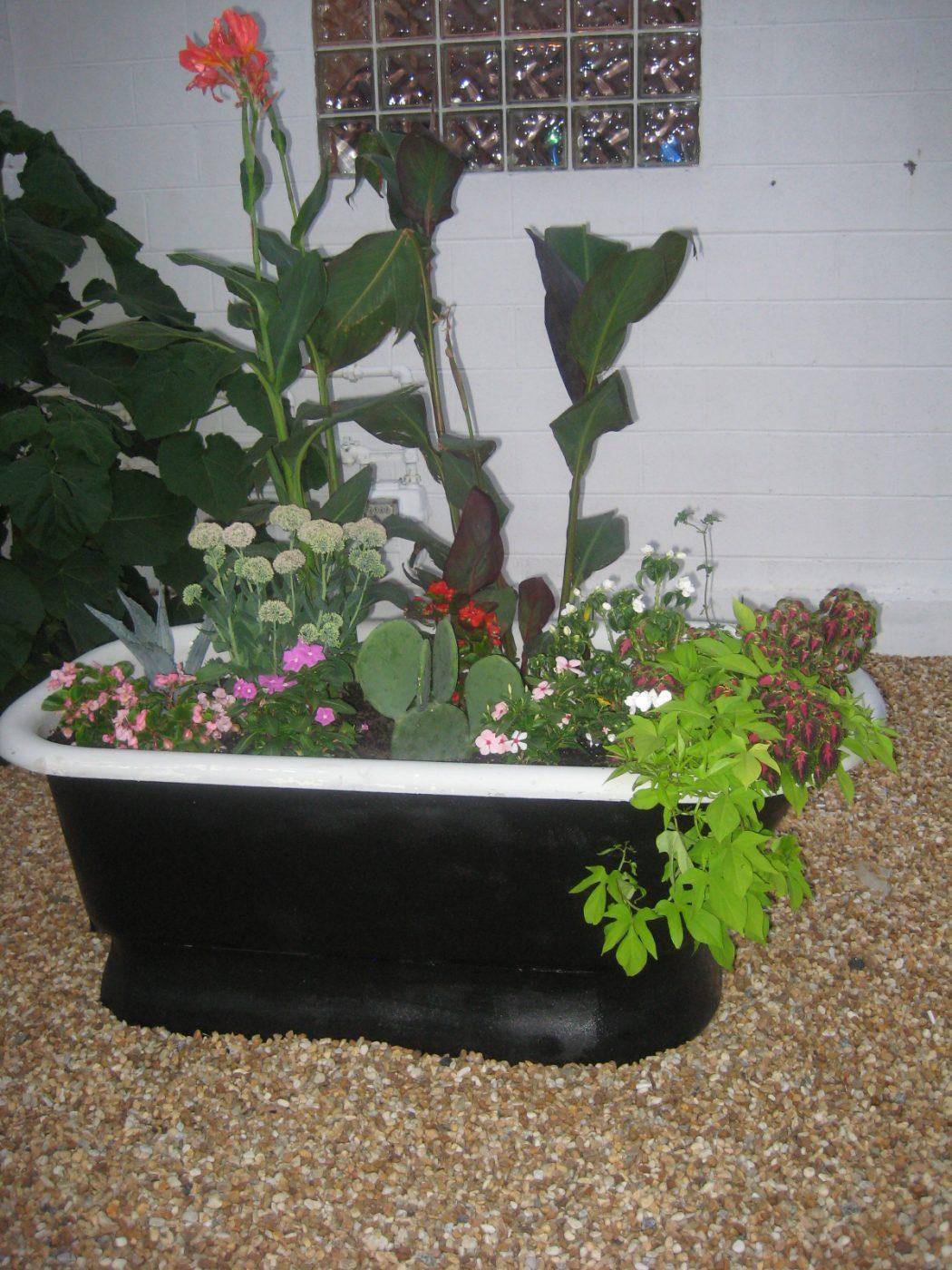 bathtub-planter 10 Fascinating and Unique Ideas for Portable Gardens