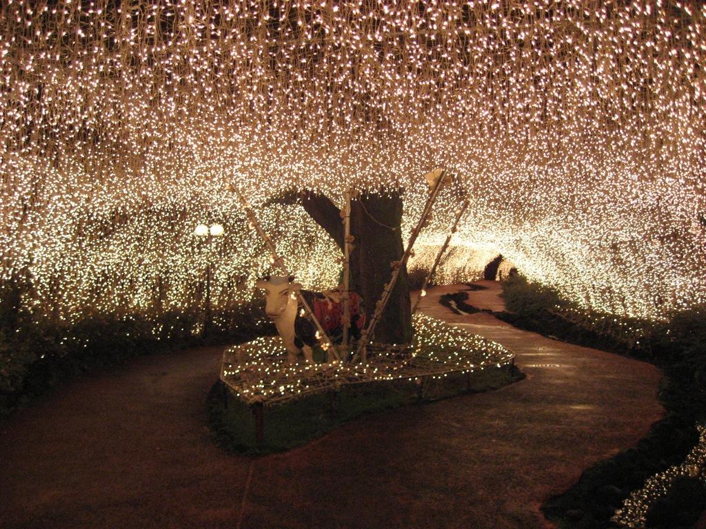 fairy Creative 10 Ideas for Residential Lighting