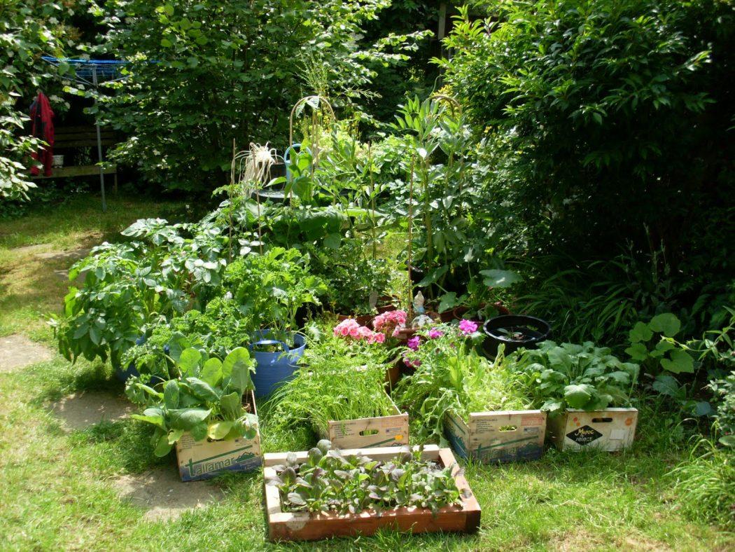 garden-002 10 Fascinating and Unique Ideas for Portable Gardens