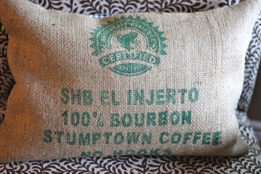 injerto Why Most Expensive Coffee Taken from Animal Source?!