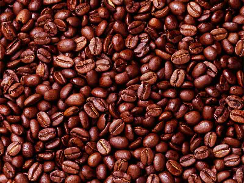 puerto-rico-coffee Why Most Expensive Coffee Taken from Animal Source?!